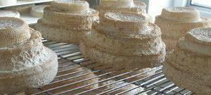 formaggio montebore