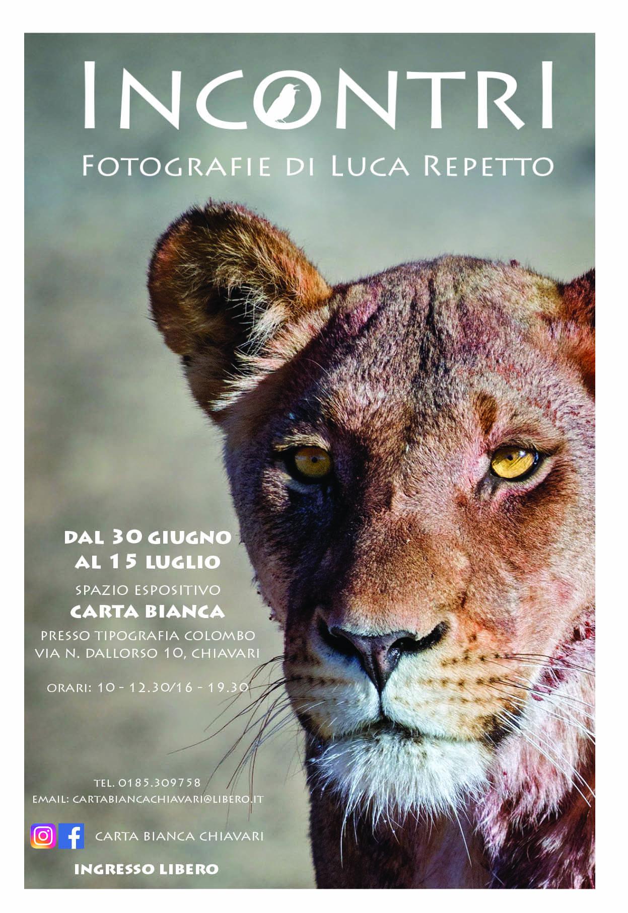 """mostra """"Incontri"""" di Luca Repetto"""