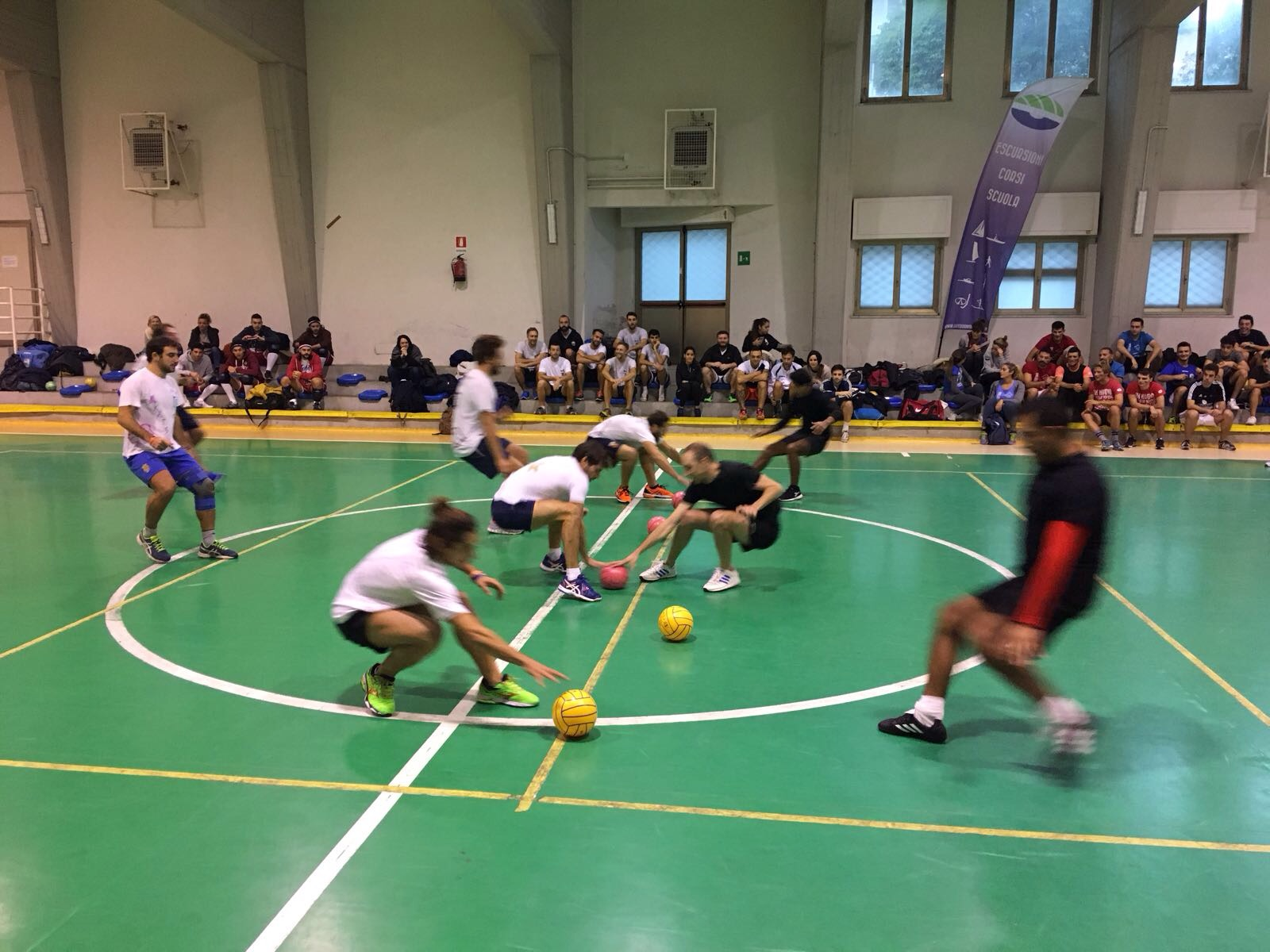 torneo dodgeball santa margherita